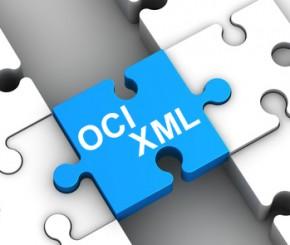 Concerto Webservice: Zugriff via XML/OCI / Concerto Schnittstellen