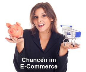 Concerto E-Commerce Schulung 12.11.2013 / Event E-Commerce-Schulung