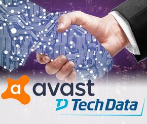 Tech Data wird Partner von Avast - © peshkova / Fotolia.com
