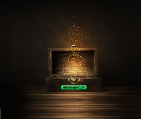 Weihnachtsjagd 2017 Sponsor Microspot