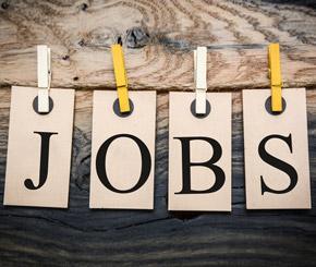 Job-News: Fachkräfte gesucht