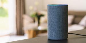 Lassen sich Alexa-Suchergebnisse manipulieren?