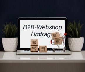 Was erwarten B2B-Webshop-Kunden