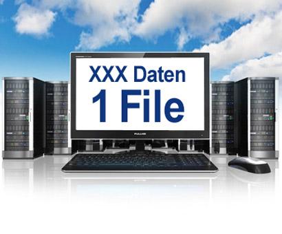 Datenschnittstellen / Datenzugriff via Datenfile