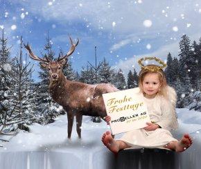 Weihnachten Logo Jagd Proseller Frohe Festtage
